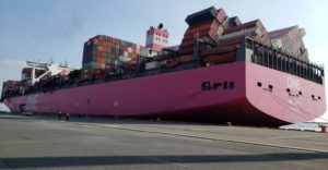 Fireworks, batteries and liquid ethanol among cargoes lost from ONE Apus